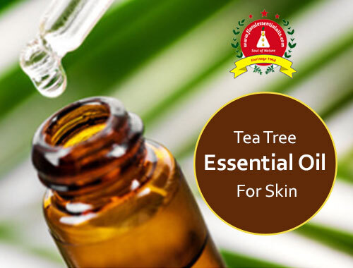 tea tree essential oil for skin