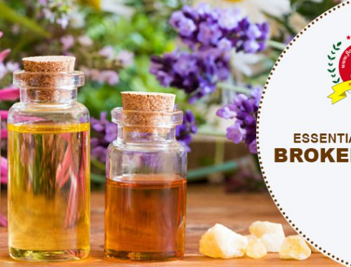 essential oils for broken bones
