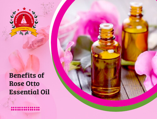 rose otto essential oil benefits