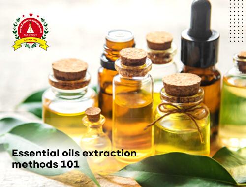 Essential Oil Extraction Methods