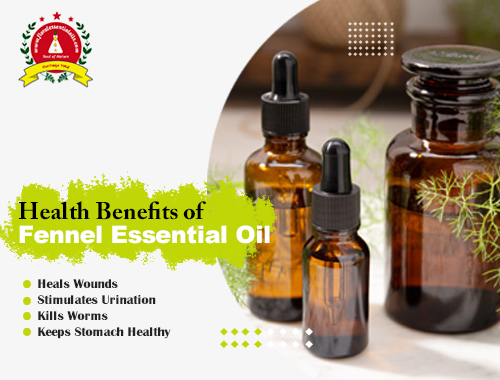 Funnel Essential Oils